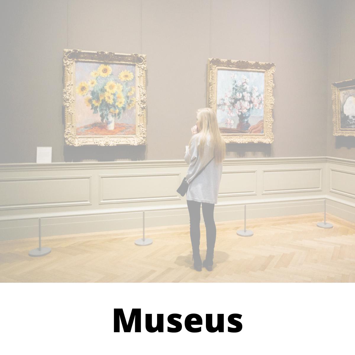 Visite Museus em todo planeta sem sair de casa.